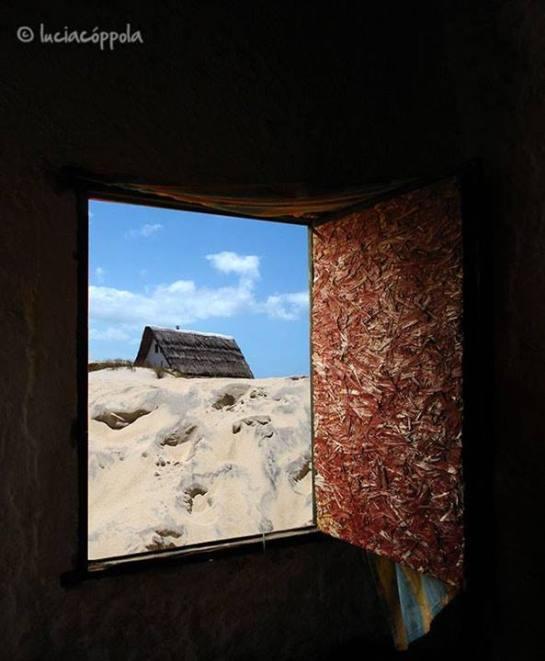 En Valizas las ventanas son fotos